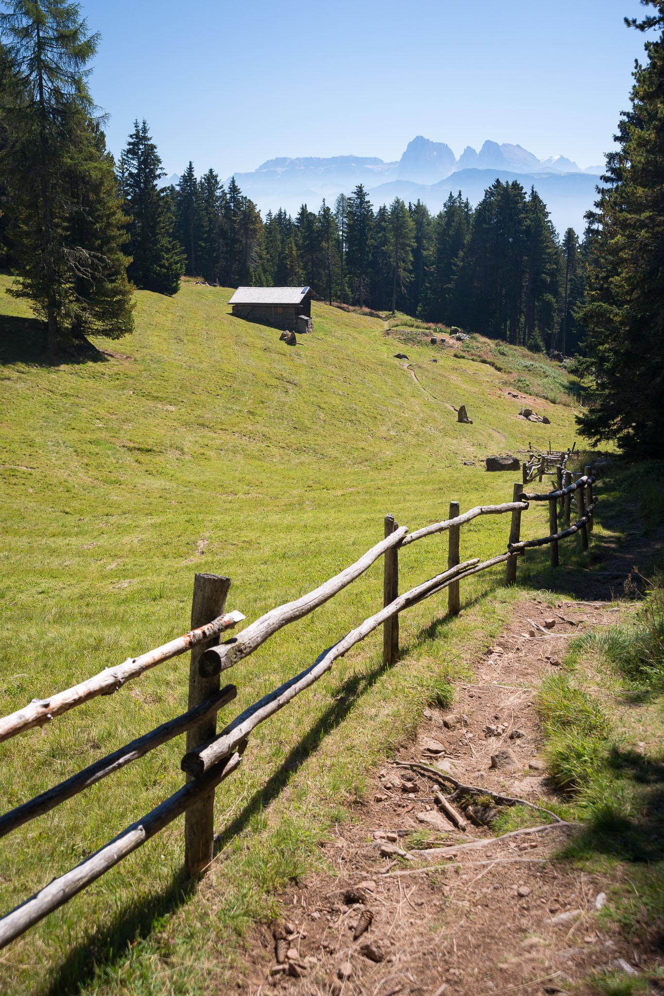 Wanderweg mit Blick auf eine Almhütte und die dahinterliegenden Dolomiten.