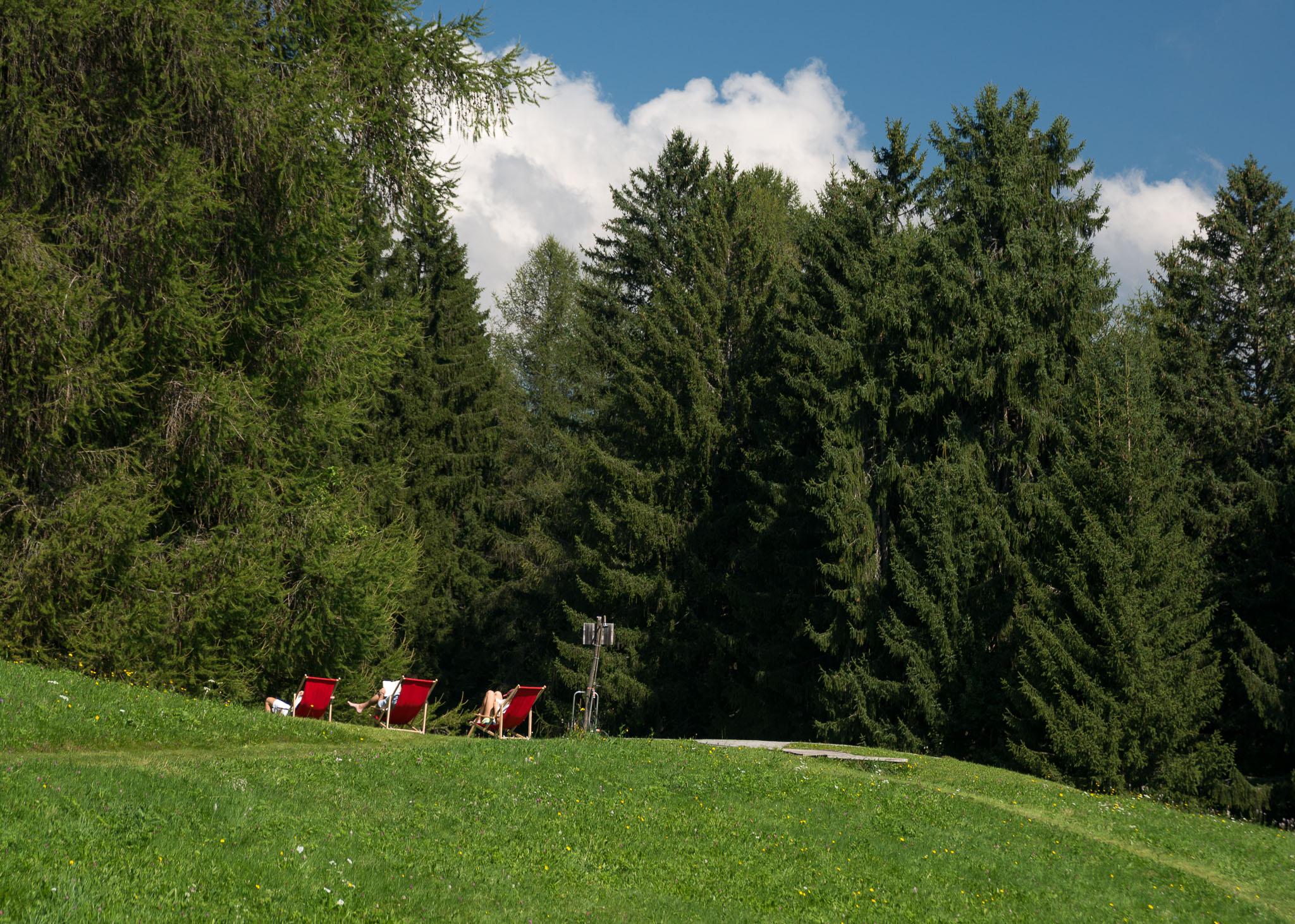 Umgeben von Wald und Wiesen laden die Liegestühle am Pool zum Entspannen ein.