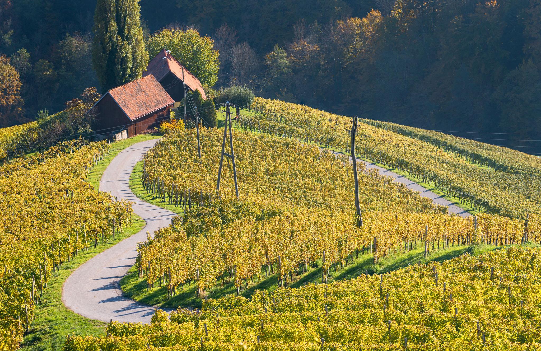 Herzerlstraße im Grenzland Slowenien / Österreich